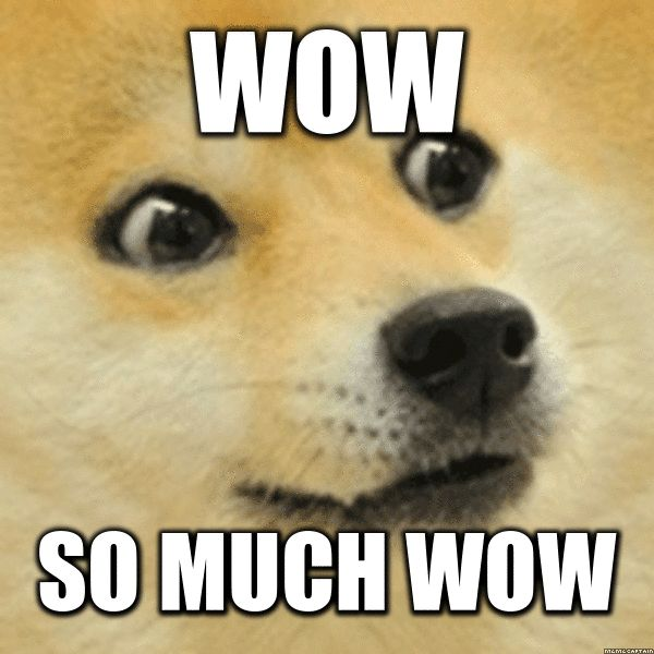 Funny Much Wow Dog Meme Image