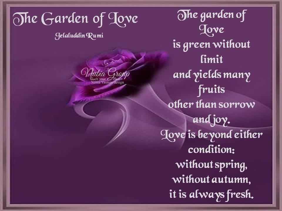 Garden Love Quotes Endearing Garden Love Quotes 08  Quotesbae