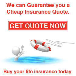 Get Life Insurance Quote Stunning Get Life Insurance Quotes 19  Quotesbae