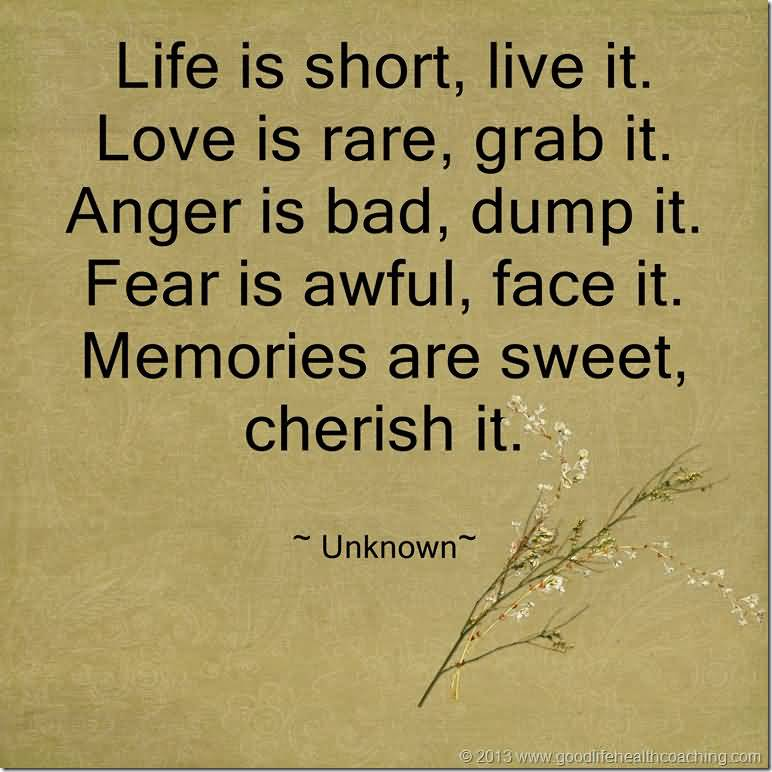 Have A Great Life Quotes Fascinating Have A Great Life Quotes 11  Quotesbae