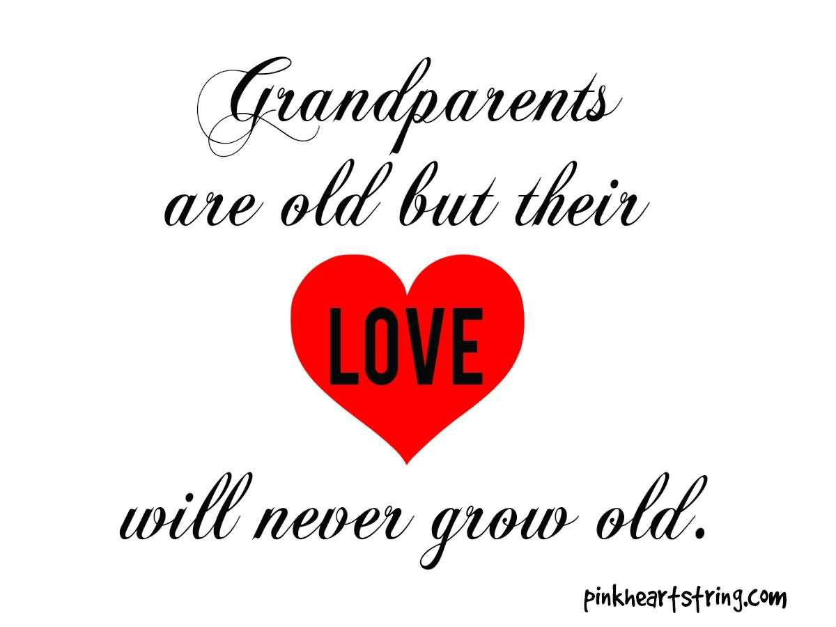 I Love My Grandpa Quotes I Love My Grandpa Quotes 04  Quotesbae
