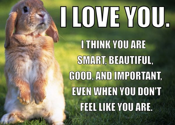 I Love You I Think You Are Smart Beautiful Good And Important Even When You Don't Feel Like You Are