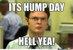 Funniest hump day memes pics jokes