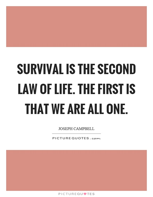 Laws Of Life Quotes Extraordinary Laws Of Life Quotes 15  Quotesbae
