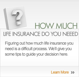 Life Insurance Policy Quote Entrancing Life Insurance Policy Quotes 14  Quotesbae