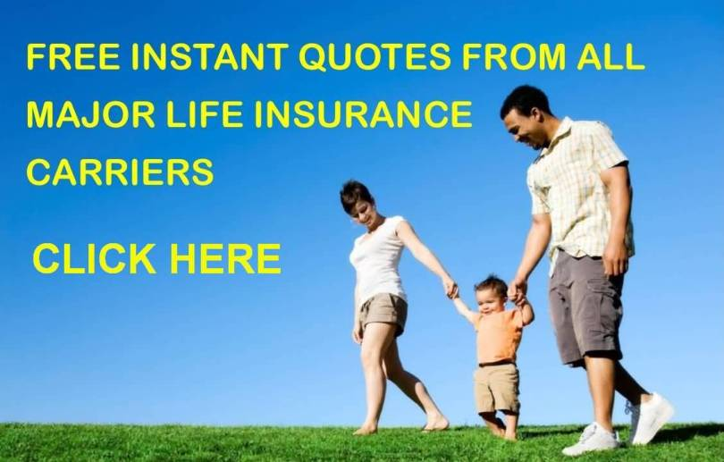 Best Life Insurance Quotes Online Delectable 20 Life Insurance Quotes Online Free Pictures  Quotesbae