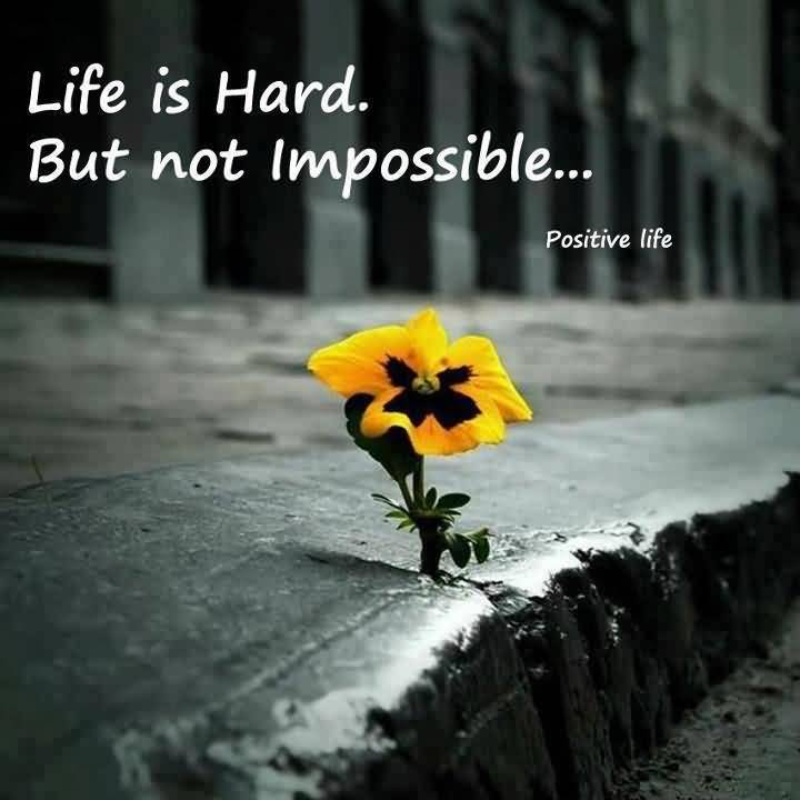 Life Is Hard Quotes Interesting Life Is Hard Quotes 01  Quotesbae