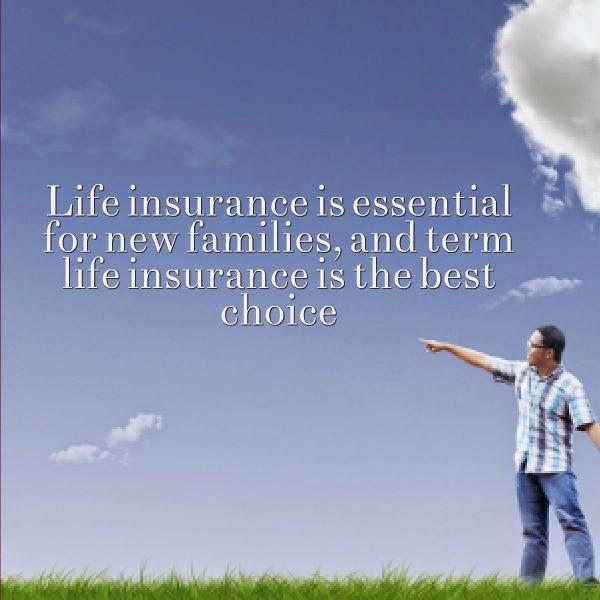 Long Term Life Insurance Quotes Brilliant Long Term Life Insurance Quotes 10  Quotesbae