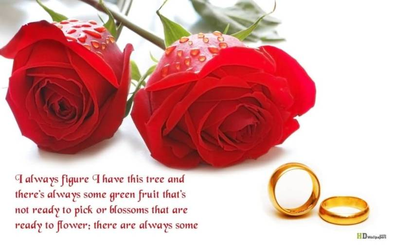 Love Flower Quotes Extraordinary 20 Love Flower Quotes Wallpapers Images And Pictures  Quotesbae