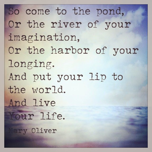 Mary Oliver Love Quotes Brilliant Mary Oliver Love Quotes 16  Quotesbae