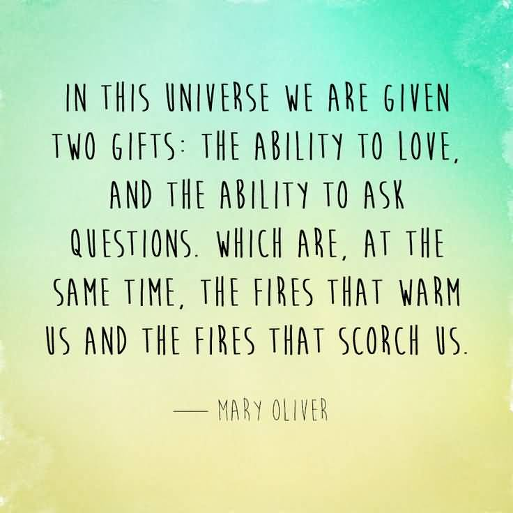 Mary Oliver Love Quotes New Mary Oliver Love Quotes 20  Quotesbae