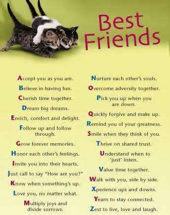 Maya Angelou Quotes About Friendship Awesome Maya Angelou Quotes About Friendship 19  Quotesbae