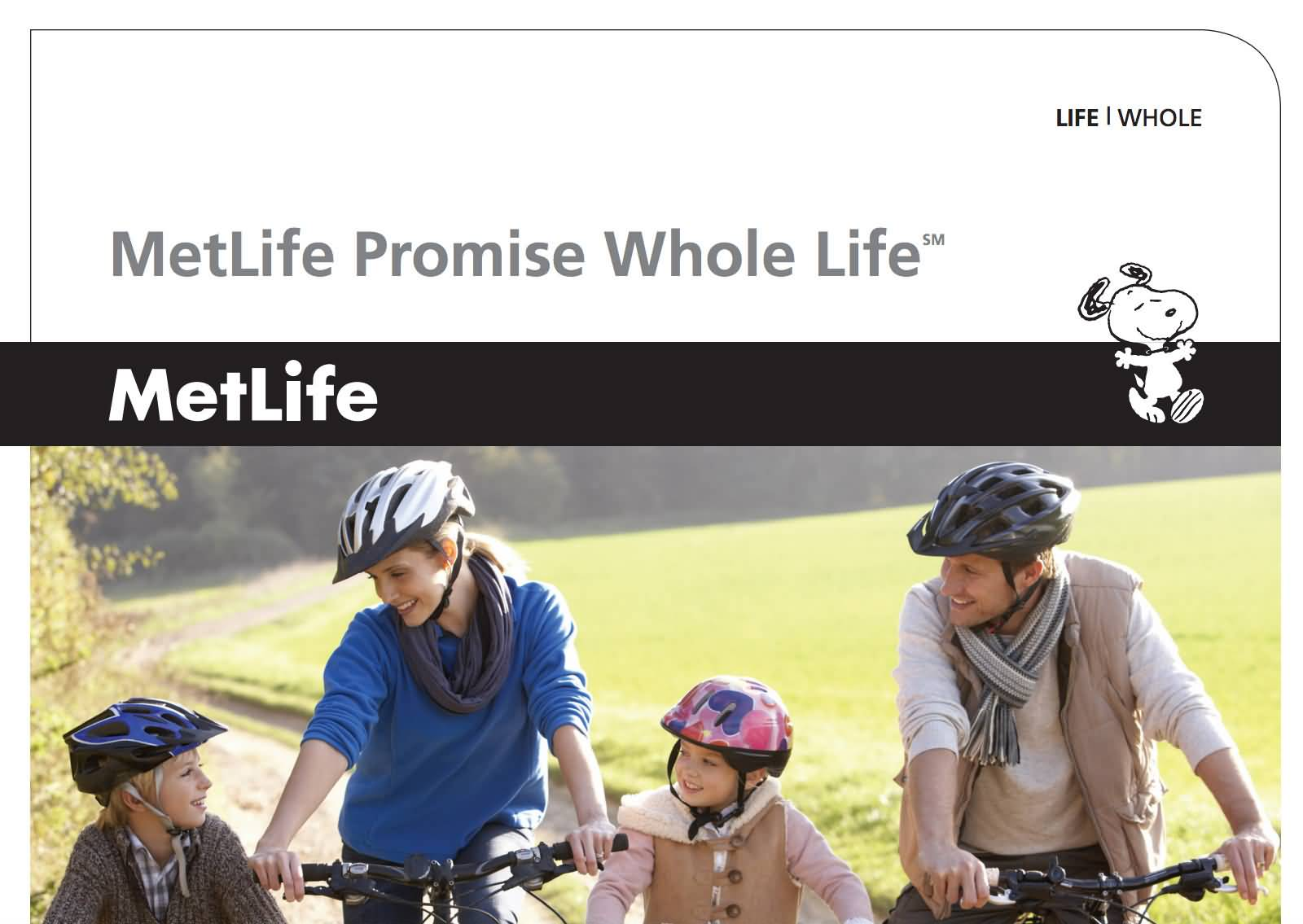 Metlife Whole Life Insurance Quotes 04