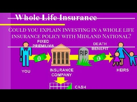 Whole Life Insurance Quote Classy 20 Online Whole Life Insurance Quotes And Pictures  Quotesbae