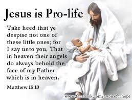 Pro Life Quotes Simple Pro Life Quotes 04  Quotesbae