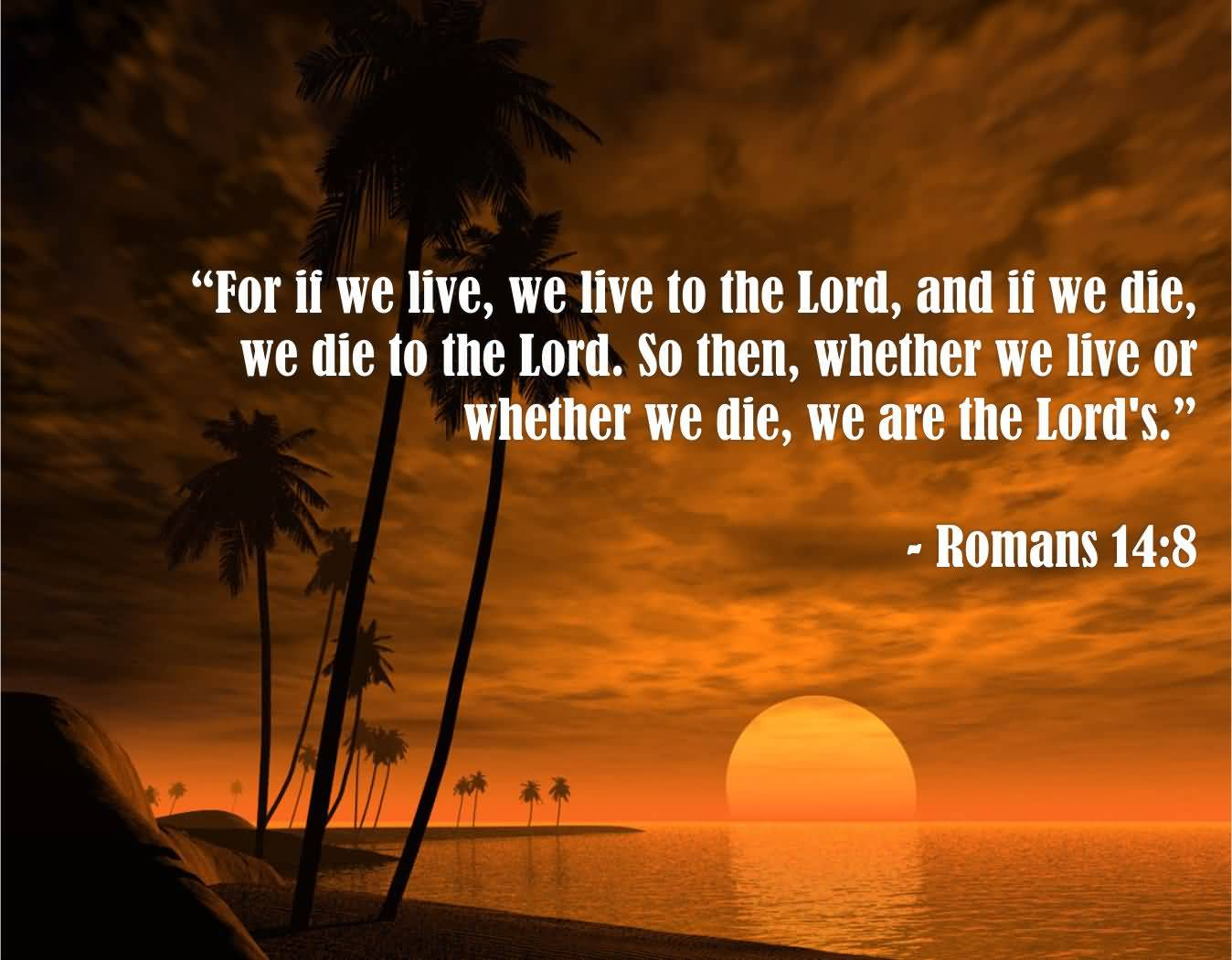 Quotes For Life And Death Quotes About Life And Death Bible 14  Quotesbae