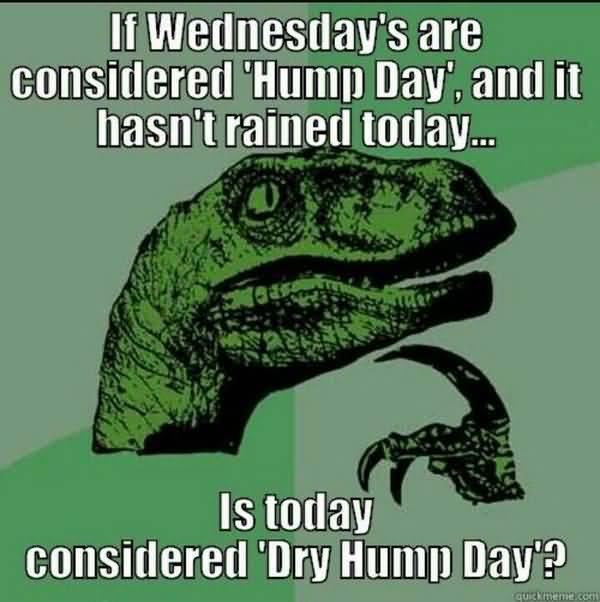 Very funny hump day memes joke