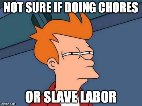 Chores Meme Funny Image Photo Joke 05