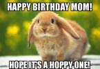 Funny Birthday Memes For Mom Joke 14