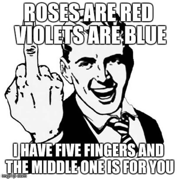 Hilarious middle finger meme photo