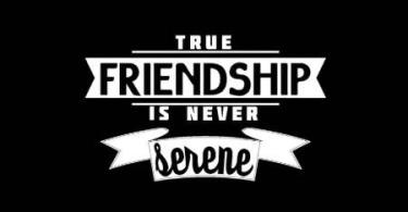 Quotes About Strong Friendship 14