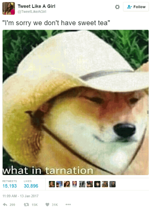 What In Tarnation Meme Funny Image Photo Joke 02