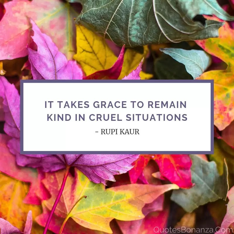 It takes grace to remain kind in cruel situations.