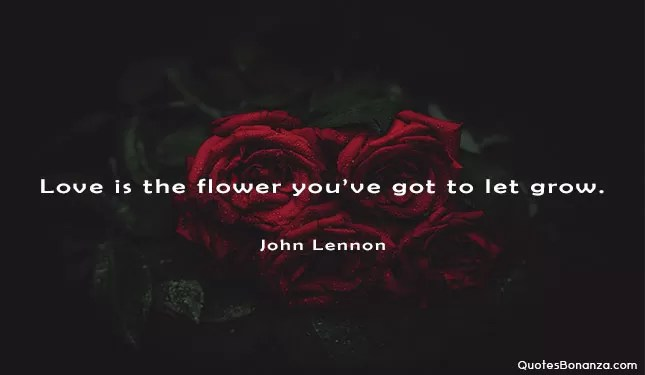 love is the flower you have got to let grow. john lennon quote