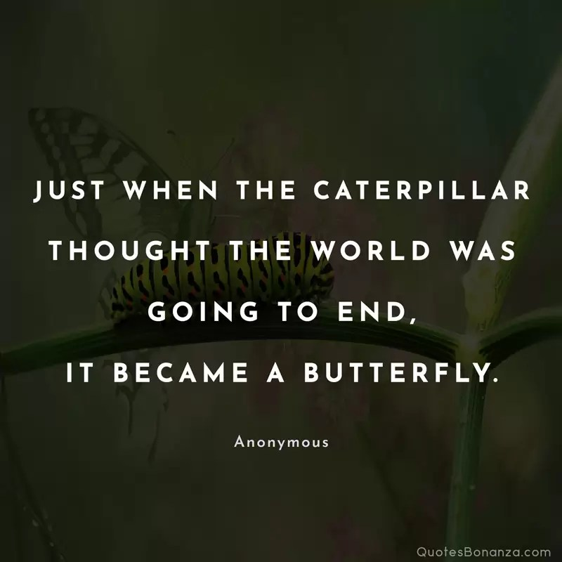 Just when the caterpillar thought the world was going to end... it became a butterfly. Anonymous