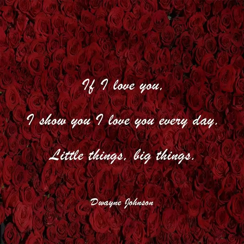 dwayne johnson quotes about love