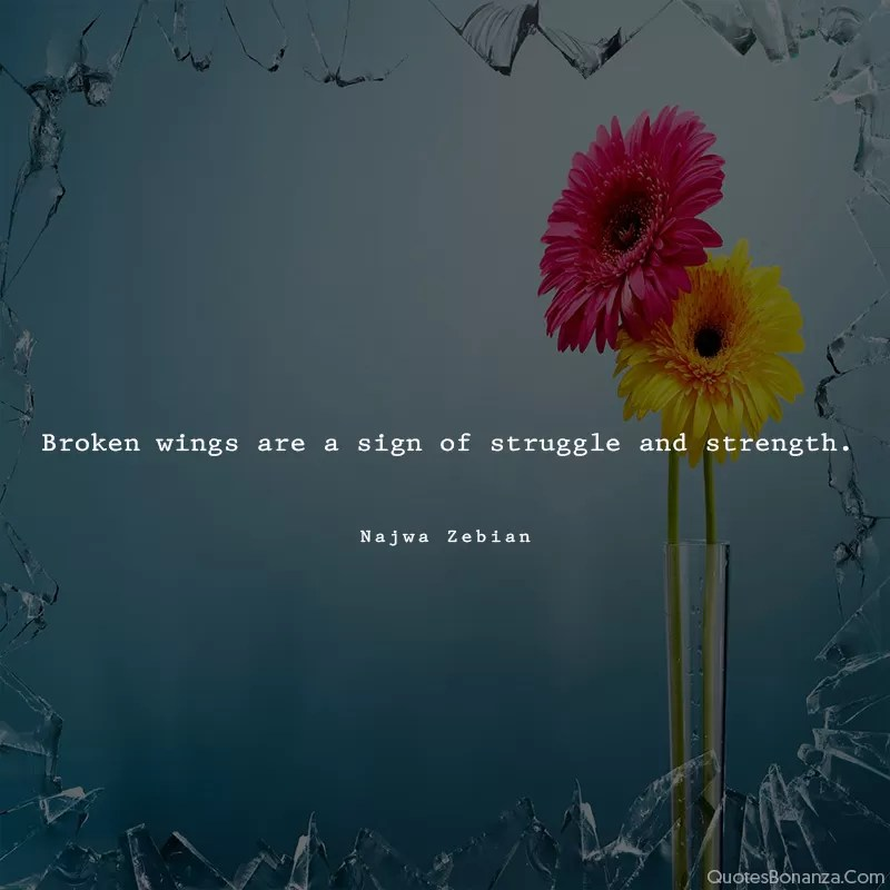 broken-wings-are-sign-of-struggle-strength