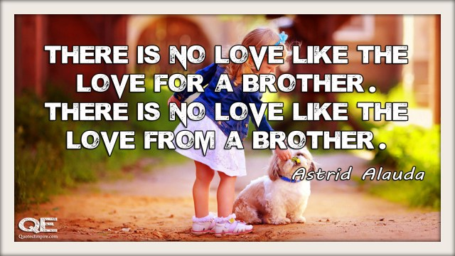 There is no love like the love for a brother. There is no love like the love from a brother. Quote by Astrid Alauda