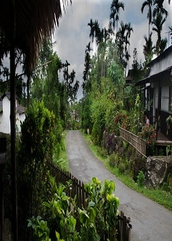 Beautiful Village Of India: Foreign Trip Also Faded Ahead Of The Sweetness Of Those 10 Villages In India! Must Visit Once_Image Source Google