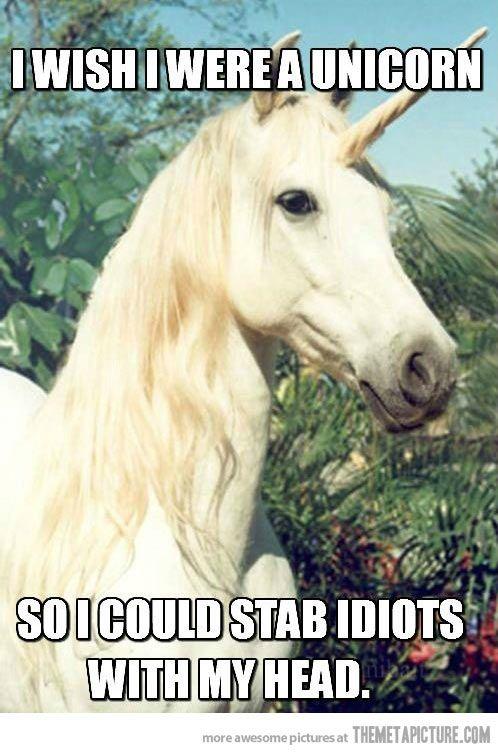 Top 35 Funniest Photos