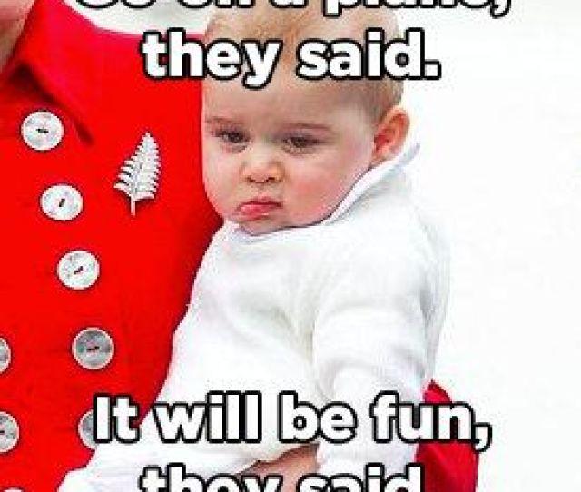 Top  Funny Memes Funny Sayings