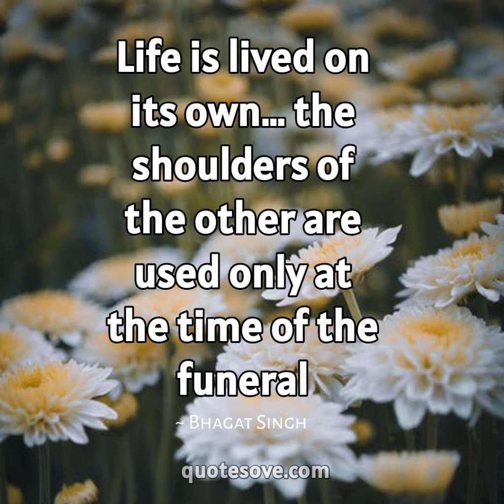 Life is lived on its own
