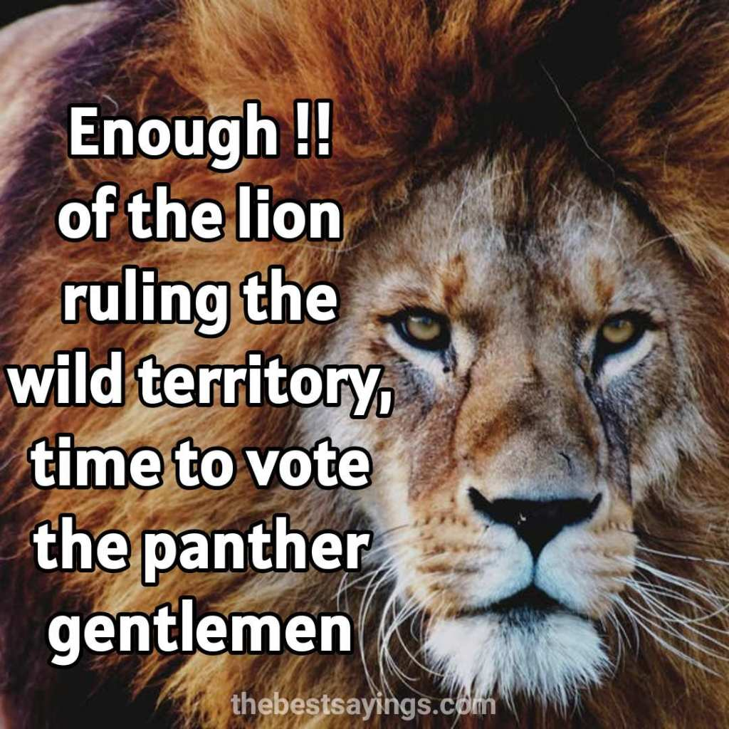Lion Quotes & The lion king quotes
