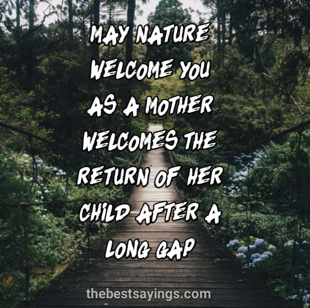 nature welcomes
