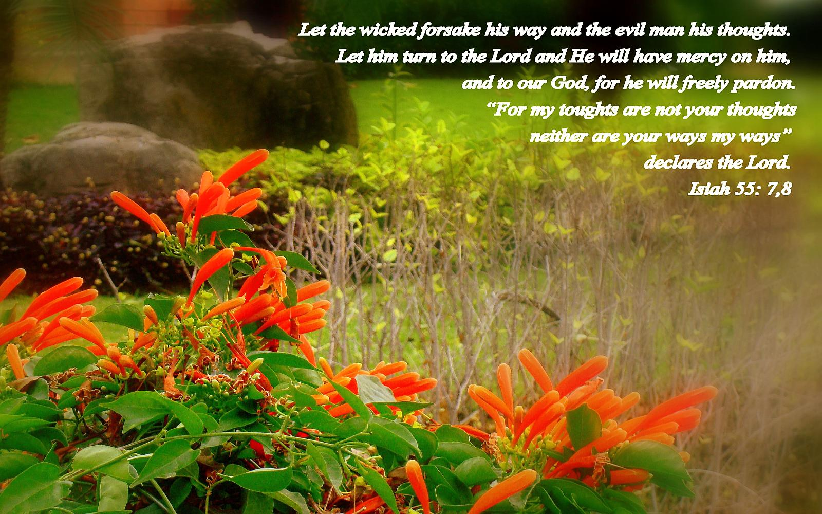 Let The Wicked Forsake His Way And The Evil Man His