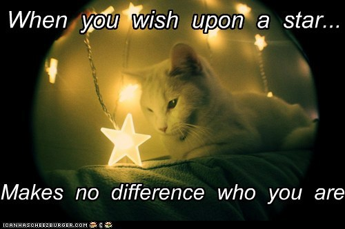 Wish Upon Star Quotes And Sayings
