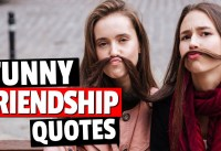 Funny Friendship Quotes That Will Get You Laughing Quotes