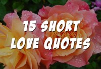 short love quotes for your boyfriend or girlfriend quotes