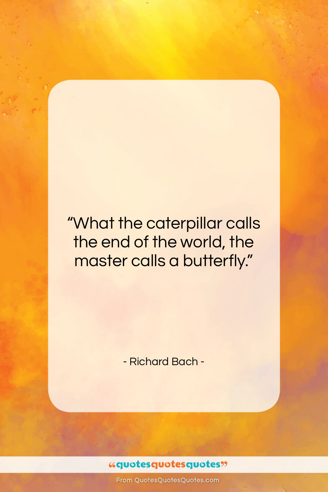 Get The Whole Richard Bach Quote What The Caterpillar Calls The