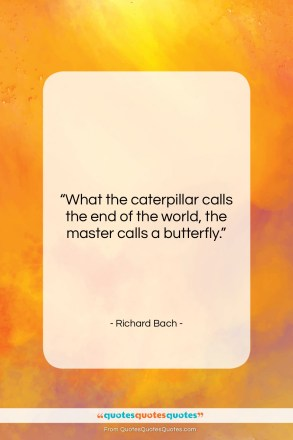 "Richard Bach quote: ""What the caterpillar calls the end of the world…""- at QuotesQuotesQuotes.com"