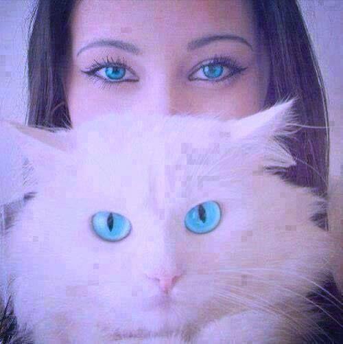 صور عيون بنات اجمل عيون كلمات جميلة