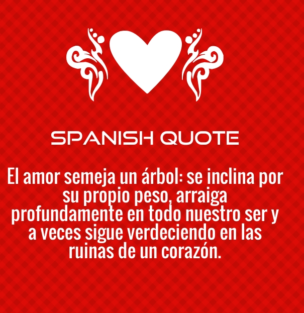 Valentine Quotes For Him In Spanish