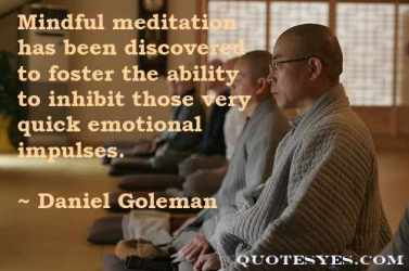 Goleman meditation quote