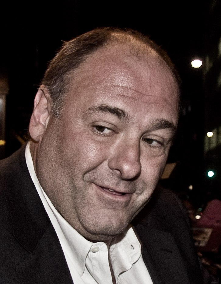 James Gandolfini before celebrity
