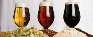 Tre olika sorters öl mot vi bakgrund. Framför ölen ligger tre högar med humle.