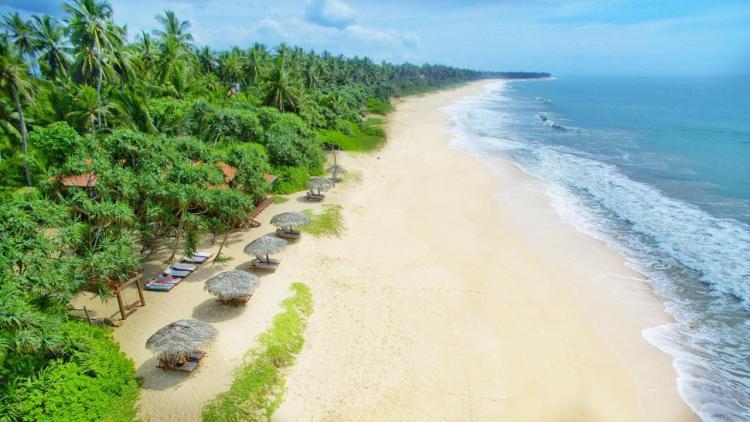 Шри Ланка отели с хорошим пляжем
